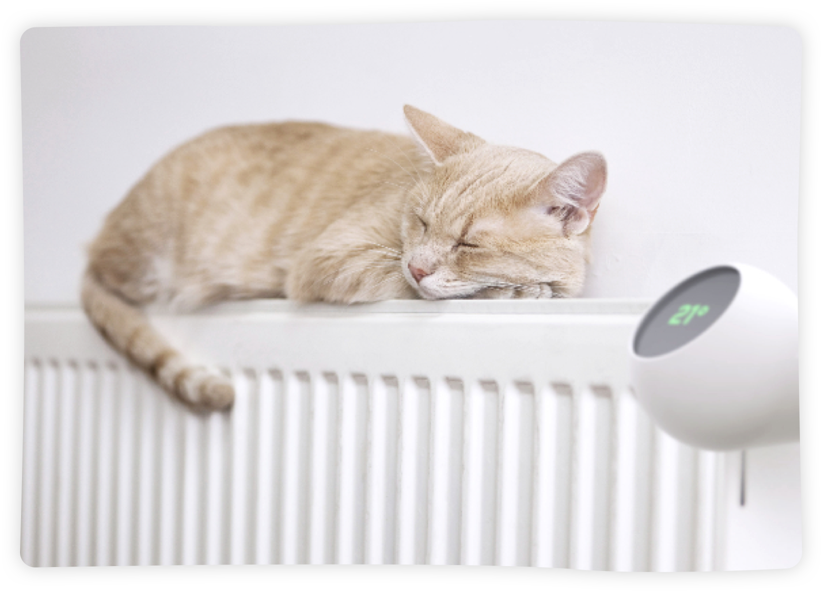 eCozy adds additional comfort to your home